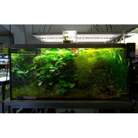 Akvarijní komplet 127x80x60 cm