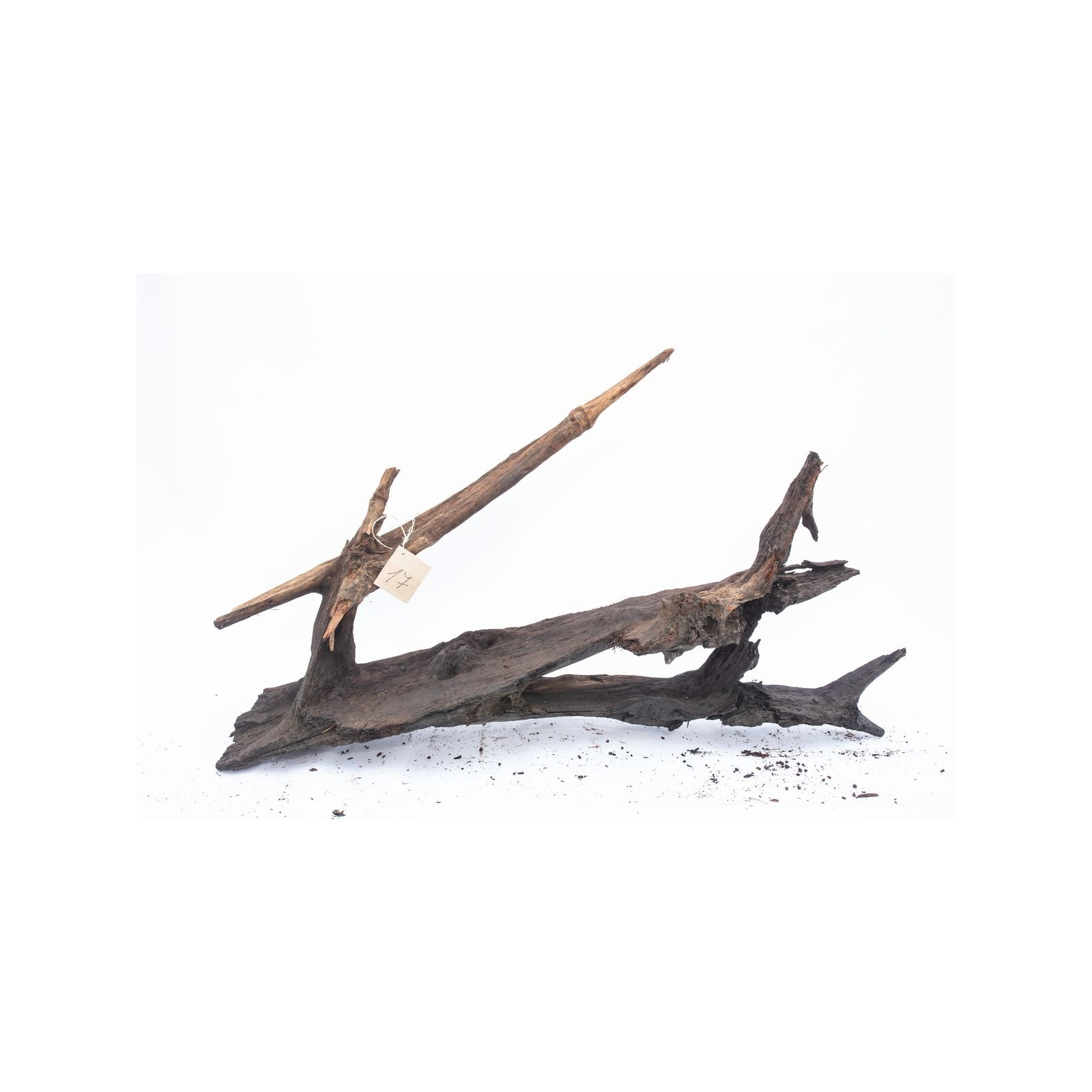 Mangrove XXL - solitér 17