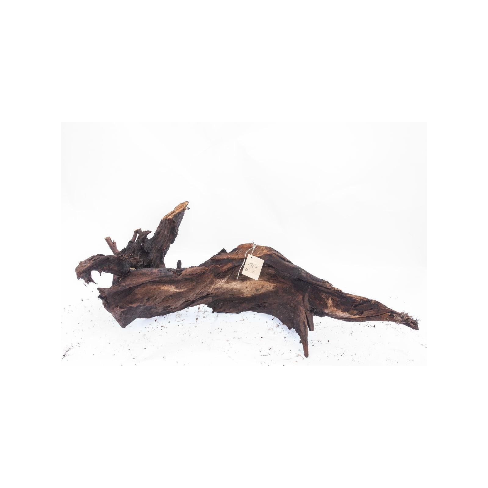 Mangrove XXL - solitér 29