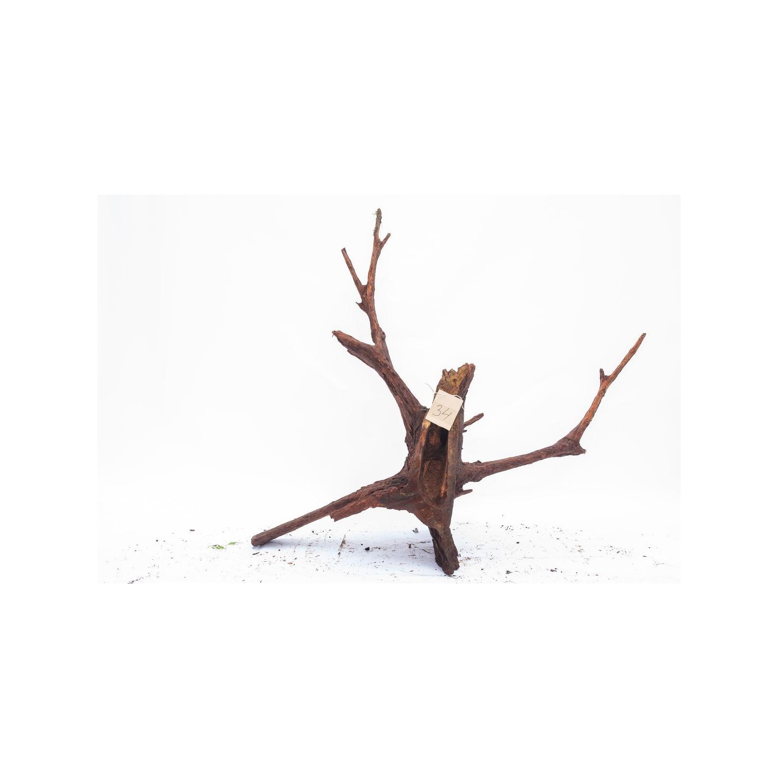 Mangrove XXL - solitér 34