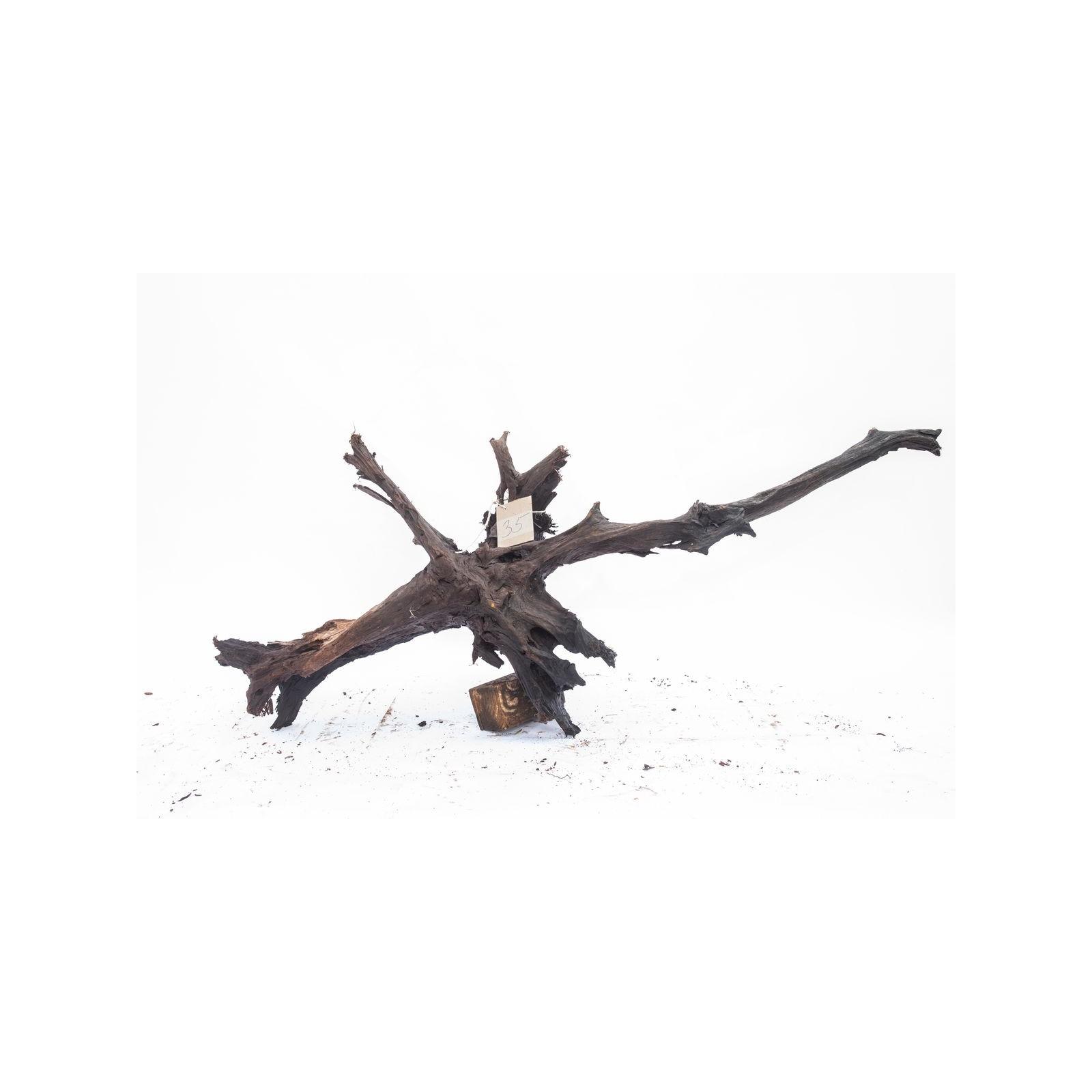 Mangrove XXL - solitér 35