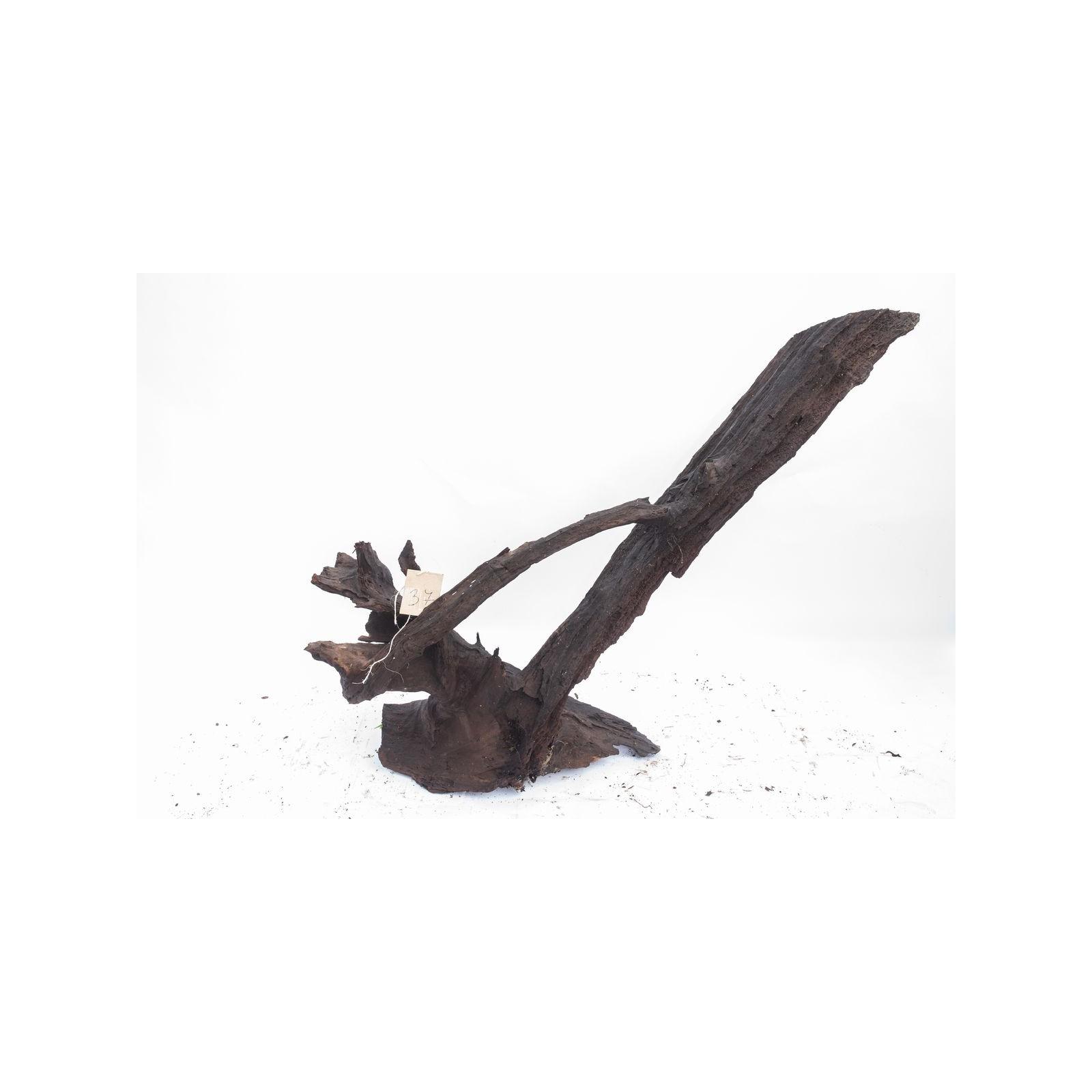 Mangrove XXL - solitér 37